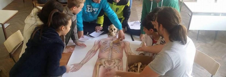 Mala škola forenzike