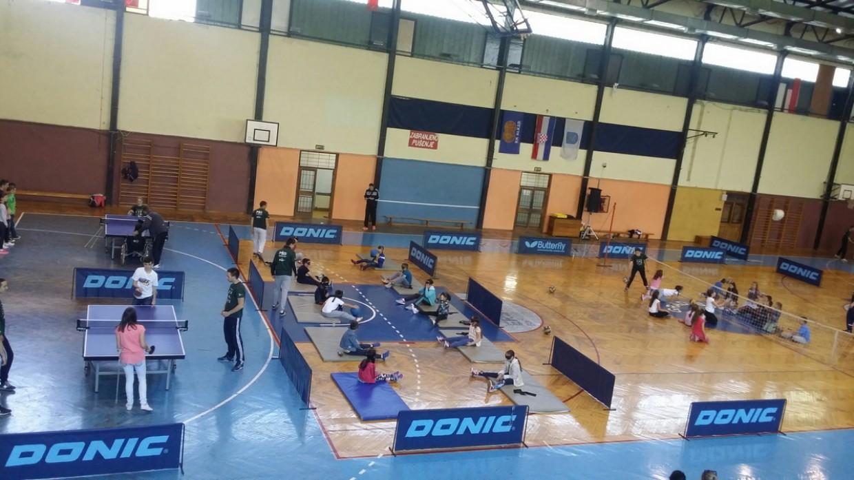 Paraolimpijski školski dan